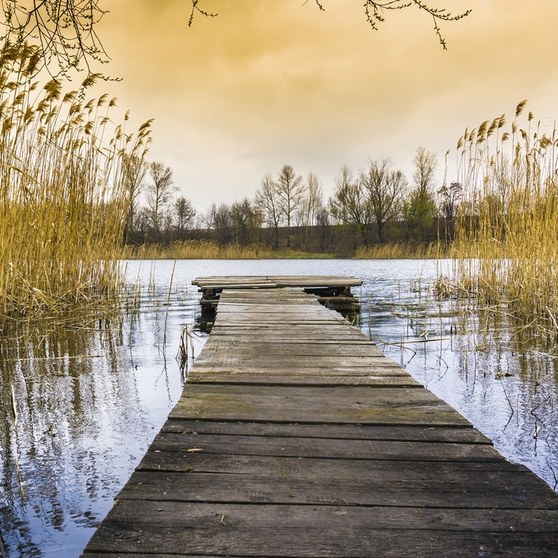 Impressum - Psychotherapie Traumatherapie Berlin Marion Welz